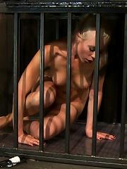 Lorelei is put on a Sybian,...