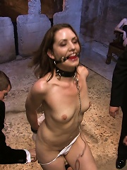 Brand new girl gets her porn...