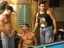 Hairy balls are much better than pool balls for these three head giving bears