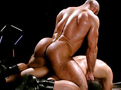 Shane Alexander & Xerxes