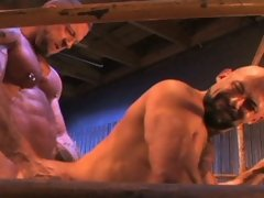 If hardcore, rough and wild sex is your idea of fun, you're going to love Hank and Rocky's one-on-one in the ring. Grunting more like animal