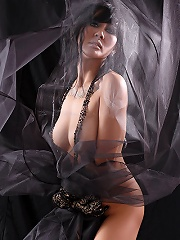 The Black Alley Model  Newty Ping